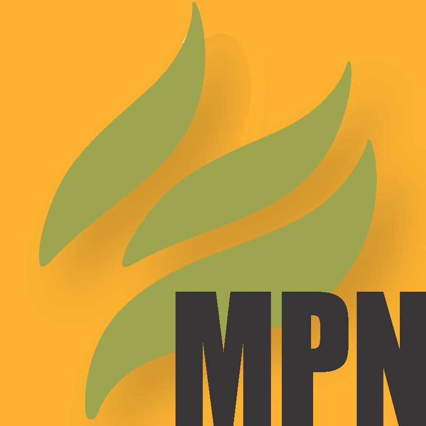 Mint Press News logo