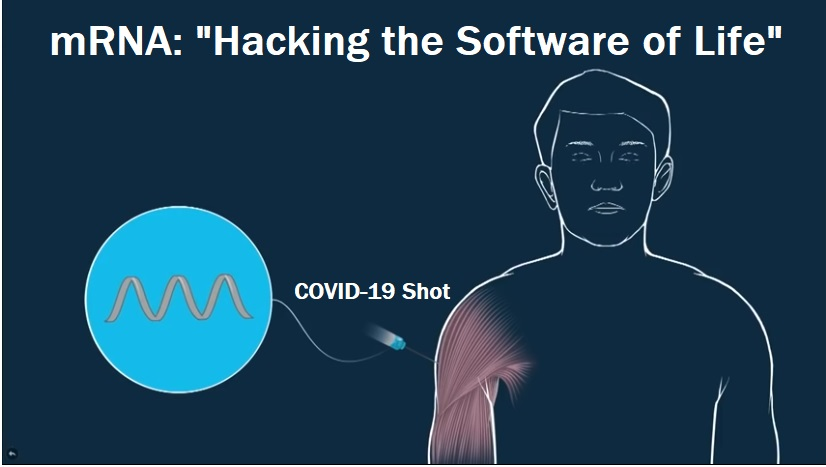 Hacking-the-software-of-life